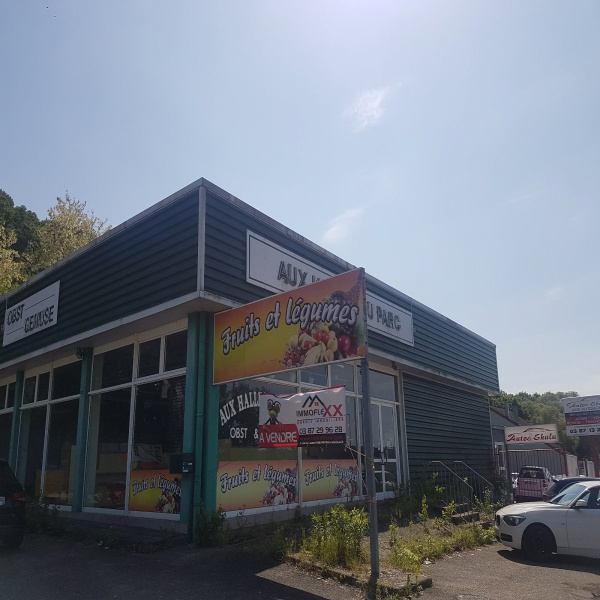 Offres de vente Immeuble Stiring-Wendel 57350